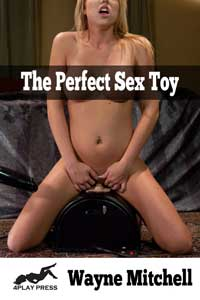 The Perfect Sex Toy by Wayne Mitchell